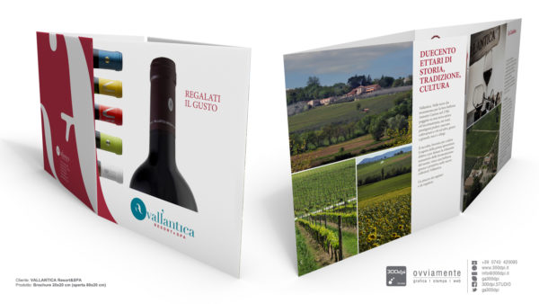 Brochure vini - Vallantica